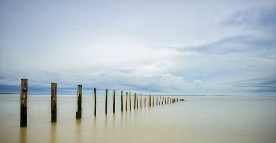 Palen op het strand van Sjoerd van der Wal