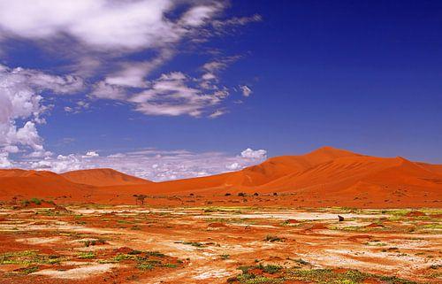 Beautiful Namib-Desert, Namibia