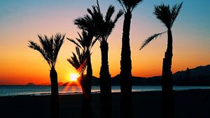 Ondergaande zon strand Benidorm (breedbeeld)