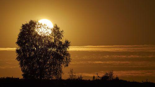Posbank Sonnenuntergang von