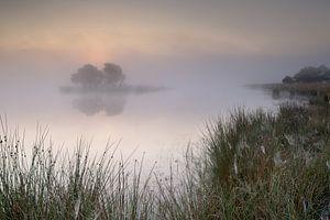Strabrechtse Heide 223