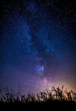 Wir sind alle nur Grashalme im Universum von Maurice Haak