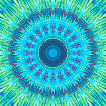 Mandala type 17 van Marion Tenbergen
