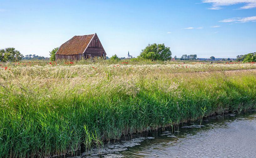 Texel in het voorjaar. van Justin Sinner Pictures ( Fotograaf op Texel)