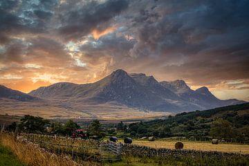 De mooie en ruwe Highlands