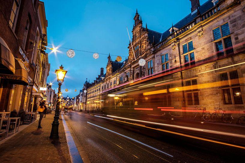 Stadhuis van Leiden van Eric van den Bandt
