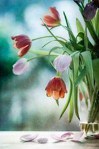 Tulips in decay van Corinna van der Ven