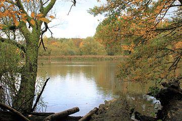 Herfst aan het meer van Roger Hagelstein