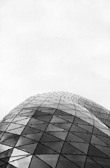 Blob Eindhoven in Zwart Wit van Bas Mandos
