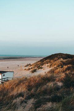 De duinen van Ouddorp van Merel Tuk