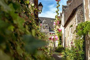 Authentiek, sfeervol dorp met bloemen in de Loire-vallei