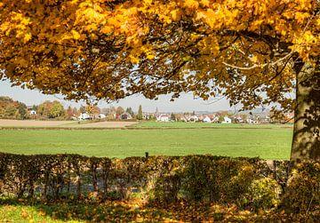 Herfst in Epen Zuid-Limburg van John Kreukniet