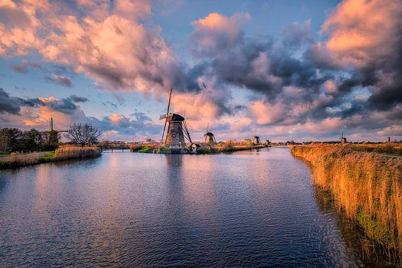 Freedom! van Sander Poppe