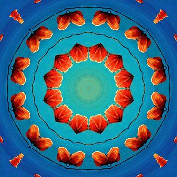Caleidoscoop van Rode Klaprozen van Greta Lipman