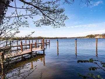 Bootssteg an der Mecklenburgische Seenplatte im Frühling von Animaflora PicsStock