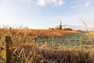 Die Kathammermühle von Johan Zwarthoed