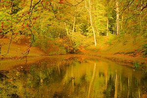 Herfstkleuren weerspiegeld in vijver