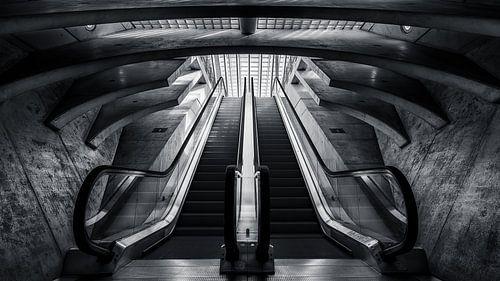 Calatrava trap
