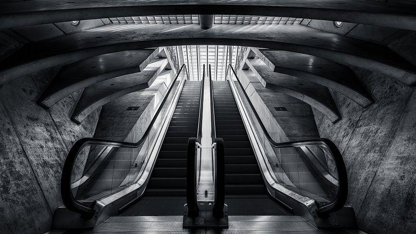Calatrava trap van Martijn Kort