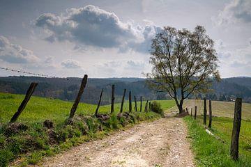 Bergischer Panoramasteig, Bergisches Land, Deutschland von Alexander Ludwig