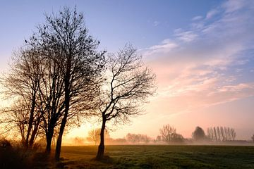 Zonsopkomst in Noord Brabant van