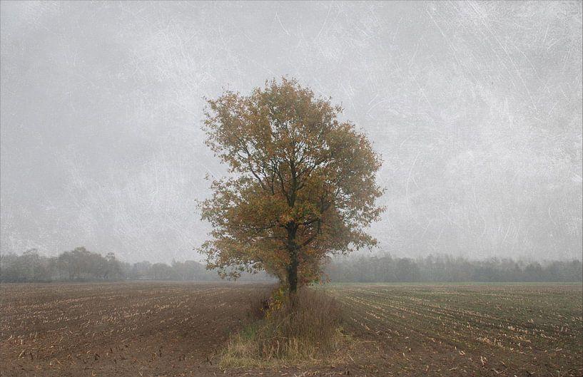 Lonely soul van Jenny de Groot