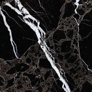 NETWORKED BLACK & WHITE v5