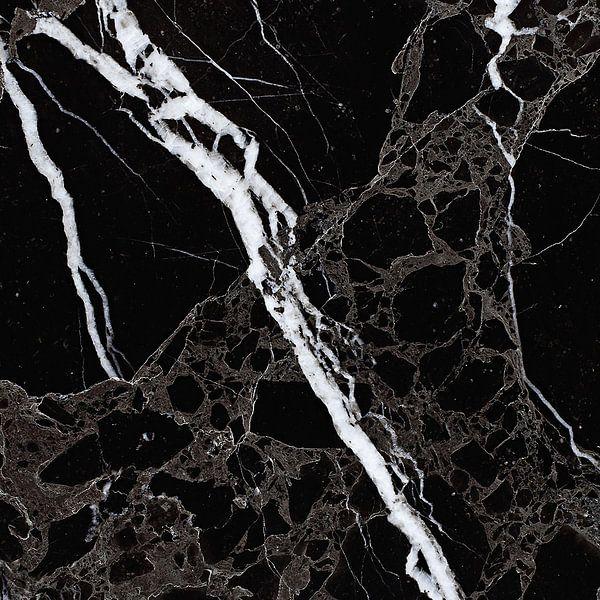 NETWORKED BLACK & WHITE v5 van Pia Schneider