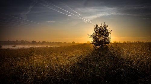 Kleurrijke zonsopgang van