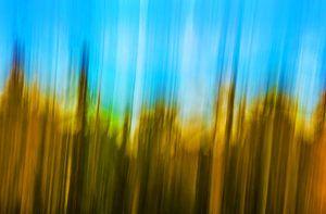 Abstract in geel en blauw  van Wim Goedhart