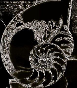 Art Shell von Vaduchi ..