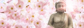 buddha in den kirschblüten von Dörte Stiller