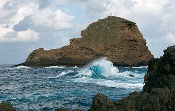 big wave on madeira island van Compuinfoto .
