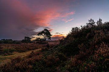 Niederländische Landschaft in afrikanischer Atmosphäre von ina kleiman