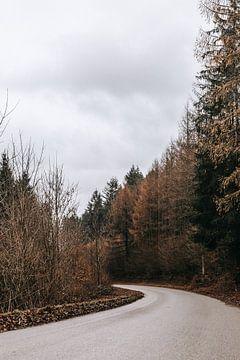 Verdwalen in de Ardennen | Naaldbos | Verlaten straat van Floor Bogaerts