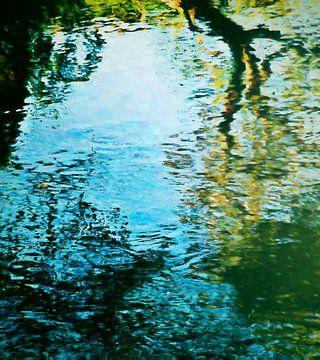 Reflecties van de natuur van Angel Estevez
