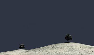 Drumlin Minimalisme, Zwitserland van Adelheid Smitt