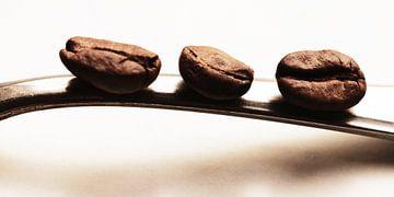 De 3 koffiebonen - Keuken beeld von