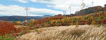 Herbstlandschaft im Wienerwald von Leopold Brix