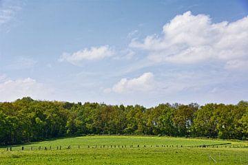 Landschaftsblick van Edgar Schermaul