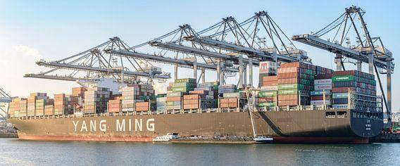 Container schip aangemeerd in de haven van Rotterdam op de Maasvlakte van Sjoerd van der Wal
