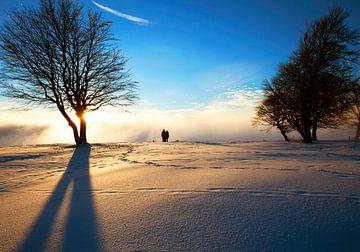 Winteravond van Jürgen Wiesler