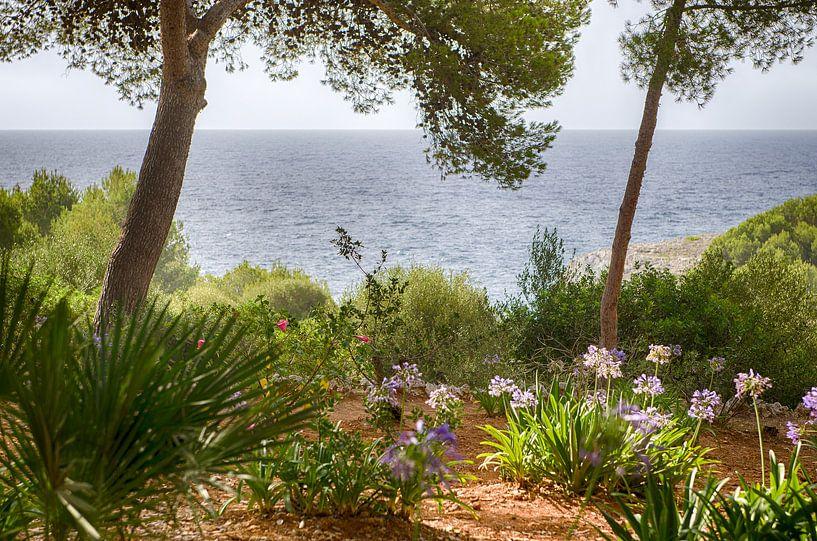 Paradijs eiland van Mark Bolijn