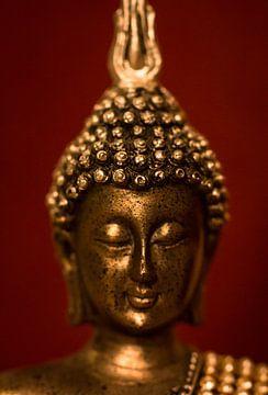 Buddha van Belia Buys