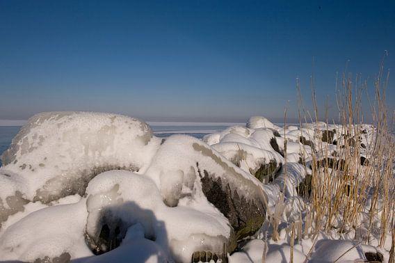 A shoreline in winter