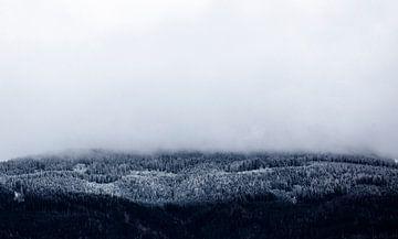First day of winter. De eerst sneeuw van de winter in de alpen van Hidde Hageman