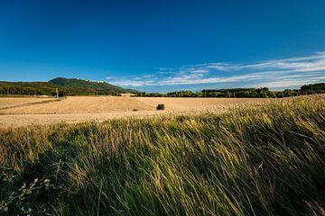 Typische französische Landschaft im Sommer mit Getreidefeldern von Fotografiecor .nl