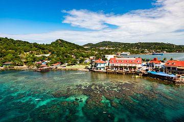 De kust van Roatan in Honduras van Dieter Walther