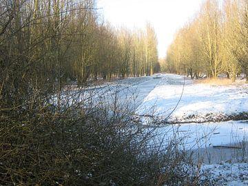 Witte deken op bosvlakte von Sjoerd Jelle Wiersma