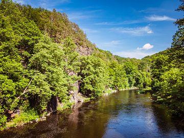 Uitzicht op de rivier Zschopau in het Ertsgebergte van Animaflora PicsStock